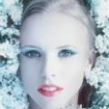 绒绒の雪绒花