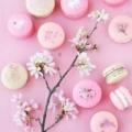 pink马卡龙