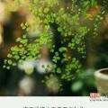 悦Mer_5892941935