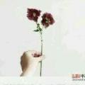 悦Mer_3774208471